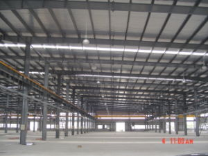 Beautiful Painted Steel Structure Factory for Poultry Shed pictures & photos