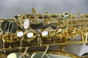 Professional Alto Saxophone (AS-516) pictures & photos