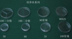 Disposable Sterilization Plastic Petri Dish pictures & photos