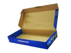 Paper Box/Gift Box/Packing Box (CP4079)
