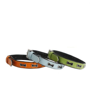 Dog Shock Collar, Making Dog Collar (YL72264) pictures & photos