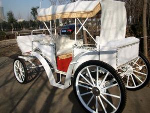 Victoria Horse Carriage Horse Cart (GW-HC01) pictures & photos