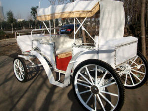 Victoria Horse Carriage with Soft Pads Seats (GW-HC01) pictures & photos
