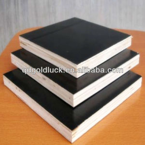1220*2440omm Construction Plywood for Construction pictures & photos