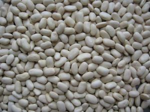 Middle Kidney Beans
