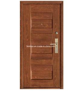 Steel Door (FX-C0391) pictures & photos