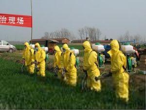 Aluminum Powder Insecticide Pesticide (1-45UM)