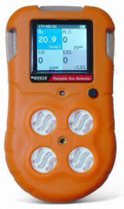 Portable Multi-Gas Detector User Manual (BX616) pictures & photos