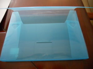Clear Plastic File Folder
