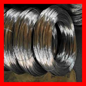 ASTM 304/304L Stainless Steel Wire Mesh pictures & photos