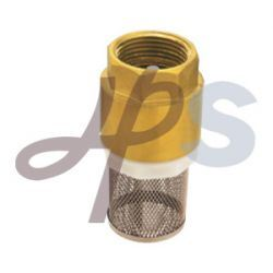 Brass Spring Check Valves Size 1/2′′-2′′ (HO06) pictures & photos