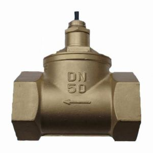 G2′′ Brass Water Flow Switch pictures & photos