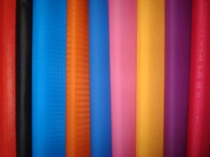 Special Nylon Fabric pictures & photos
