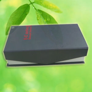 Electronic Cigarettes (SGE901-M)