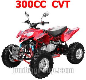300cc ATV, Quad Bike with CVT, 300cc Automatic ATV Quad (DR787)