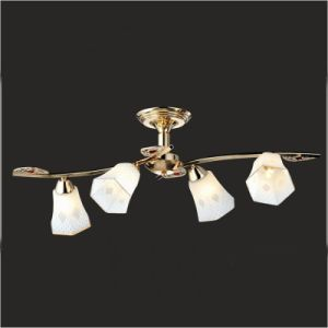Chandelier Ceiling Lamp Light pictures & photos