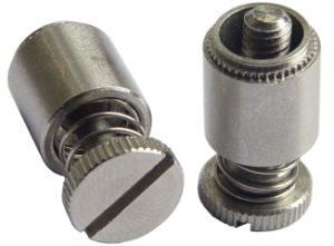 Screw Head Panel Fastener Assemblies with Large Head pictures & photos