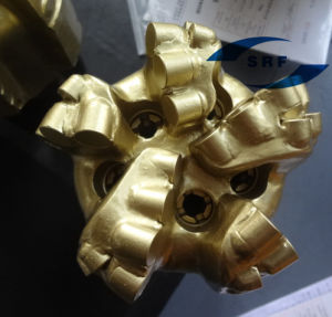215.9mm 5 Blades Diamond PDC Bit with Double Rows