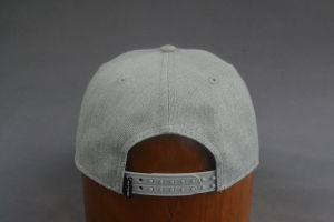 Alternative Panel Snapback Hat with Applique Embroidery pictures & photos