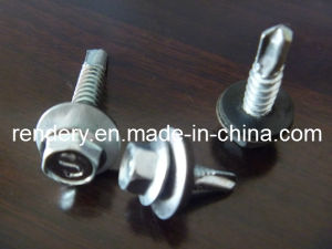 DIN Standard Hex Head Self Drill Screw SDS Tornillo pictures & photos
