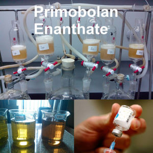 Recipe for 50ml Primobolan Enanthate 200mg/Ml Methenolone Enanthate pictures & photos
