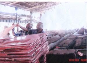 Copper Cathode Grade a 99.99%Min pictures & photos