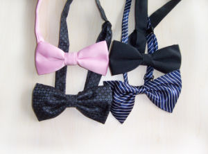 Bow Ties pictures & photos