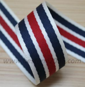 High Quality Twill Nylon Webbing for Bag and Garment#1401-155 pictures & photos