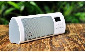 Portable Speaker (P4020)