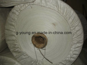 PP Woven Fabric for Using Packaging Bag pictures & photos