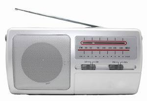 FM/SCA Portable Radio Receiver (KST-R217)