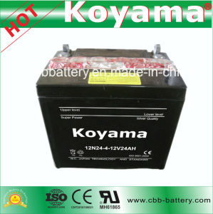 12V24ah Deep Cycle Maintenance Free Dry Charged Motorcycle Battery 12n24-4 pictures & photos