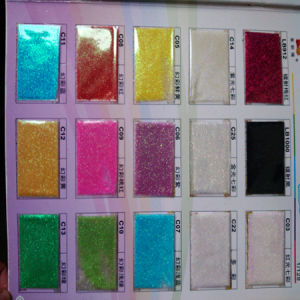 Glitter Swatch Book pictures & photos