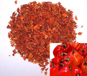 Dehydrated Red Bell Pepper3x3/9x9/6x6