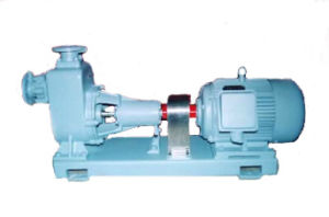 Marine Self-Priming Pump (CWZ) pictures & photos