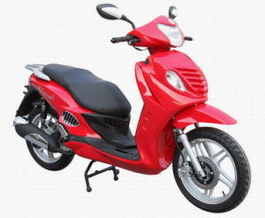 300CC EEC Motorcycle (FPM300E-17)