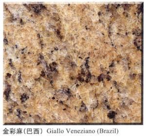 Giallo Veneziano Granite, Granite Tiles and Granite Countertops pictures & photos
