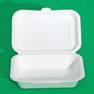 Biodegradable Sugarcane Paper Lunch Box (FDA, LFGB, EN13432)
