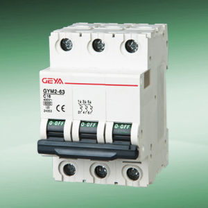 Gym2 Mini Circuit Breaker (C60N type 3P)