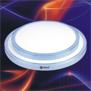 Ceiling Light Fixture (ZD77. T6. C008)