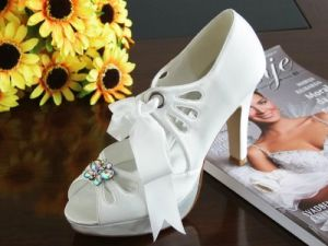 Elegant Beautiful Bridal Shoes (Ogt0322)
