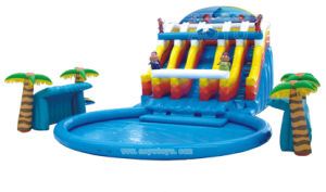 New Design Water Park Water Slide Inflatable Slide pictures & photos