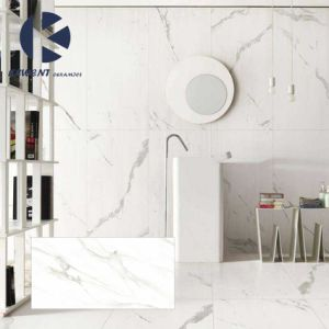 1200X600X5.5mm White Marble Look Porcelain Thin Tile for Interior and Exterior pictures & photos