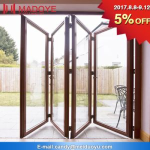 Decorative Material Hollow Glass Folding Door Available in India Market pictures & photos