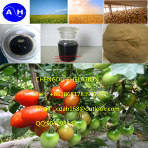 Supply High Quality Amino Acid Powder for Agriculture Use pictures & photos