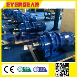 Bw Series Cycloidal Gearbox pictures & photos