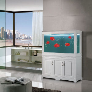 Aquarium Glass Fish Tank with Cabine