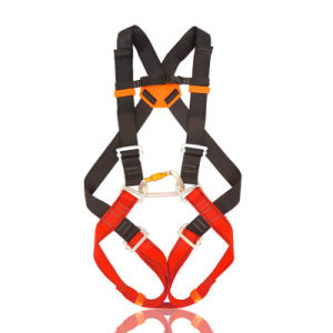Industrial Polyester Work Full-Body Adjustable Safety Harness Belt pictures & photos