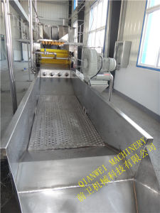 Vegetable Washing Machine pictures & photos