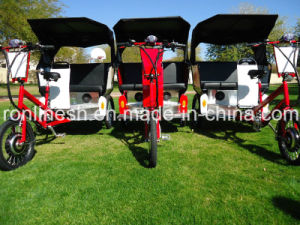 Hot Wider Body Pedal/ 250W/500W Electric Pedicab/Pedicab Rickshaw/Rickshaw/Tricycle/Trike MP3&Speaker CE pictures & photos